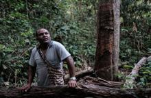 როგორ აკეთებენ პრეზერვატივებს ბრაზილიის  ტყეებში