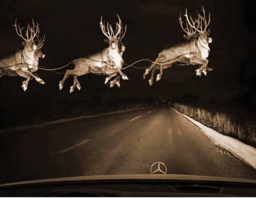 ფრთხილად თოვლისბაბუ!