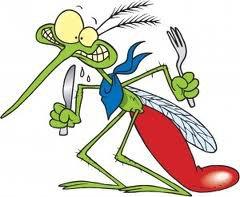 რა კატეგორიის ადამიანებს ესხმიან თავს კოღოები