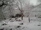 თოვლი მოსულა...
