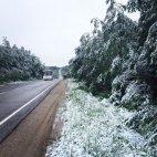 18 ივნისს  რუსეთის ქალაქ ტვერში თოვლი  მოვიდა