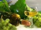ღვინო და ყურძენი