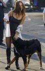 ნეტა რა მოეპრიანა ამ ძაგლს ამ მომენტში?