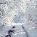 ვისაც თოვლი გიყვართ