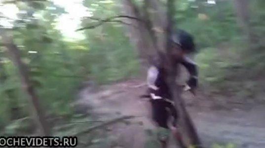 """ველოსიპედისტს გზა ხემ """"გადაუჭრა""""."""