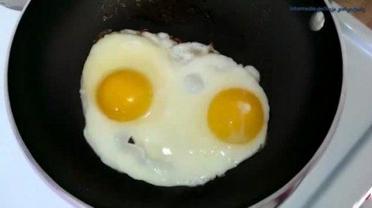 """""""მოლაპარაკე"""" შემწვარი კვერცხი"""