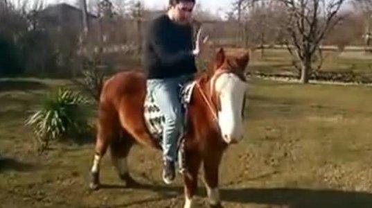 მიხეილ სააკაშვილი საქართველოში ჩამოვიდა და ცხენით დადის