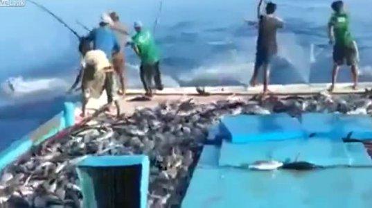 ყველაზე სწრაფი თევზაობა - გავოცდი