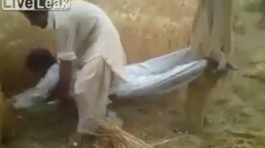 """პაკისტანური """"კომბაინი"""""""