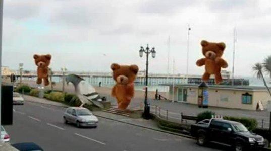აი რა შეუძლია ვიდეო მონტაჟს ანუ გიგანტი დათვები გზაზე.