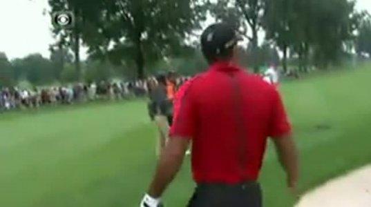 საუკეთესო მომენტი Tiger Woods