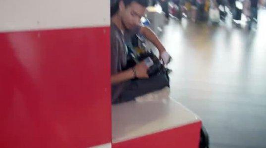 როგორ უბრუნებს დაკარგულ ნივთებს ძაღლი ამსტერდამის აეროპორტში