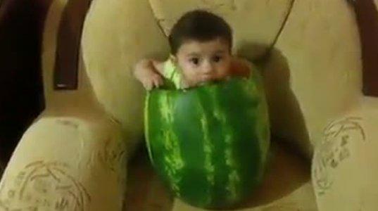 საოცრად პოზოტიური ვიდეო-ბავშვი საზამთროში