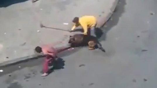 კაცმა ძაღლებს თავი ძალით დააგლეჯინა